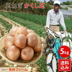 【予約商品】淡路島新たまねぎかくし玉5Kg#かくし玉 5K#