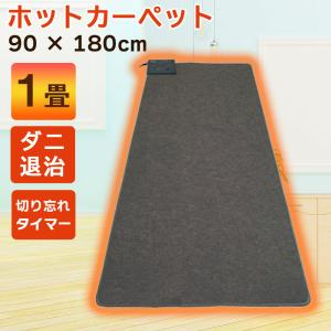 ホットカーペット 1畳用 電気カーペット 本体 90×180cm ダニ退治 暖房家電 カーペット 敷物 マット