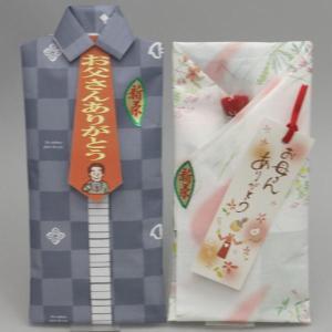 日本茶 緑茶 ギフトセット 詰め合わせ ご贈答 父の日&母の日ギフトセット 香川県産 新茶 100g入 2袋|imaya-storo