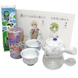 茶器セット 茶道具セット 誰でもお気軽煎茶碗5点セット 入れ方用パンフレット 2冊付|imaya-storo