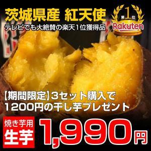 さつまいも 紅天使 生芋 1kg 茨城県産 焼き芋に最適 熟成 紅はるか 干し芋セット かいつか 子...