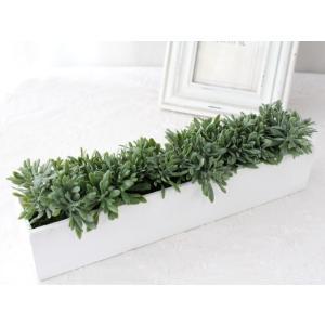 観葉植物 造花 フェイク インテリア グリーン P-36 impish