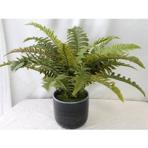 造花 観葉植物 インテリア グリーン P-61|impish