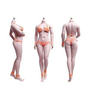 TBLeague 1/6スケール フィギュア 巨乳 女性 素体 ボディ 少し肉付きモデル素体 最新ア...