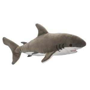 Fin Great White Shark