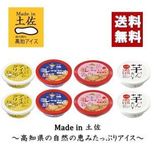 ギフト アイスクリーム 詰め合わせ 送料無料 高知アイス おやつアイスセット 産地直送 プレゼント ...