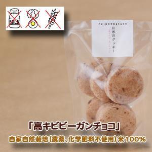 パイポン畑  高キビビーガンチョコ 米粉100%手焼きクッキー×4 グルテンフリー 自家自然栽培 |inahoya