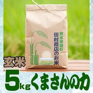 元年産 熊本県産 「くまさんの力」玄米5kg