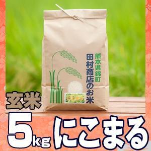 元年産 熊本県産米♪にこまる玄米5kg