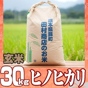 元年産 熊本県産☆ヒノヒカリ玄米30kg/精米無料
