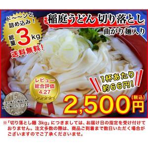 送料無料 稲庭うどん 切り落とし麺3kg(曲がり麺入り) 乾麺