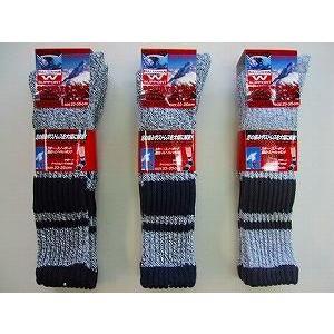 靴下 レディース スキー  クッションパイル スポーツソックス 同色2足組色おまかせ スキー スノボに最適 クッション底&Wサポート|inasaka