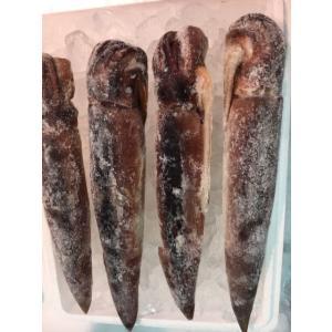 スルメイカの旬は夏。旬のうちに食べたいと思い、買って、生姜醤油炒めにしました。プリプリ美味しい!