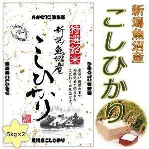 2年産 新潟県魚沼産コシヒカリ10kg(5kg×2)送料無料(北海道・沖縄・九州の場合は別途料金がかかります)|inebourice