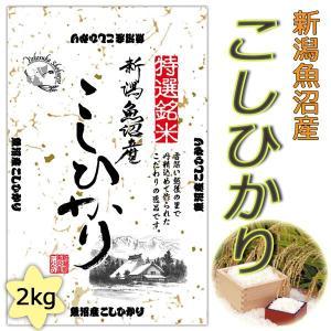 2年産 新潟県魚沼産コシヒカリ2kg送料無料(北海道・沖縄・九州の場合は別途料金がかかります)|inebourice