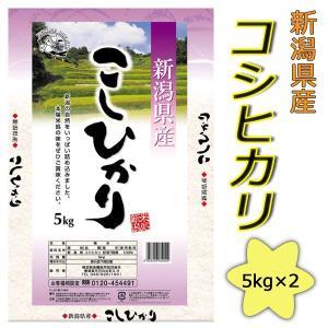 2年産 新潟県産コシヒカリ10kg(5kg×2)送料無料(北海道・沖縄・九州の場合は別途料金がかかります)|inebourice