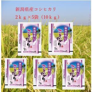 2年産 大特価 セ−ル 新潟県産コシヒカリ10kg(2kg×5)送料無料(北海道・沖縄・九州の場合は別途料金がかかります)|inebourice