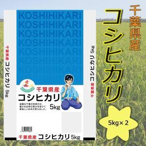 2年産新米 千葉県産コシヒカリ10kg(5kg×2)送料無料(北海道・沖縄・九州の場合は別途料金がかかります)|inebourice