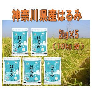 特売 数量限定セ−ル 令和2年産 神奈川県産はるみ10kg(2kg×5) 送料無料(北海道・沖縄・九州の場合は別途料金がかかります)|inebourice