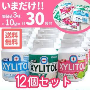 歯科専用 キシリトールガム ボトル 90粒入 12個 (個包装各味10袋、計30袋付) 送料無料 メール便不可