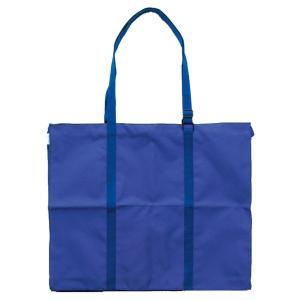 ターレンス ヴァンゴッホ キャンバスバッグ F10 487254|infomart