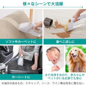 カーペット洗浄機 掃除機 布 掃除 家庭用 車内 リンサークリーナー RNS-300 アイリスオーヤマ insair-y 06