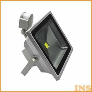 30W センサー付き投光器 STL30W (代引不可)(TD)|insair-y