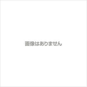 ラミネートフィルム a4 A4 100μ 100枚 A4サイズ 100ミクロン ラミネーター フィル...