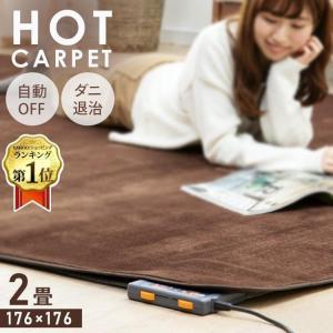 ホットカーペット 2畳 本体 電気カーペット 2畳用 2帖 暖房 カーペット 176×176cm 収納 折り畳み ダニ退治機能 テクノス TEKNOS|insdenki-y