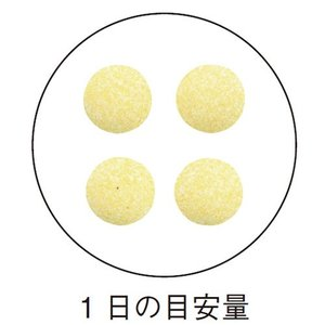 ビタミンC / 栄養機能食品 / 250mg×120粒 / 1粒でレモン8個分のビタミンC|inship|02