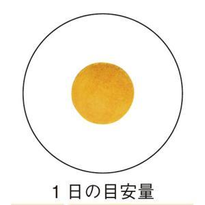 鉄 / 栄養機能食品 / 250mg×30粒 / 女性にうれしいミネラルパワー|inship|03