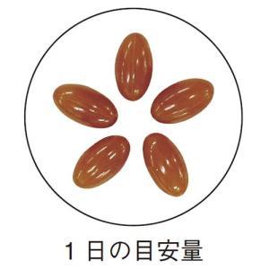 大豆レシチン / 445mg×150粒 / 脂っこい食事が多い方に|inship|03