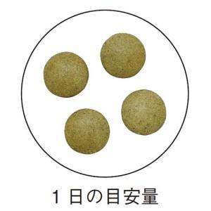 伊豆キダチアロエ / 250mg×120粒 / 毎朝を快適に|inship|03