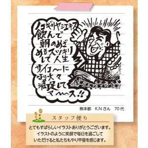 ノコギリヤシエキス / 317mg×60粒 / 中高年男性を応援|inship|06