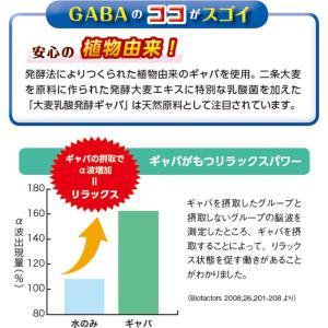 GABA(ギャバ) / 機能性表示食品 / 250mg×30粒 / 癒しのアミノ酸|inship|04
