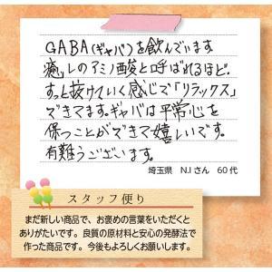 GABA(ギャバ) / 機能性表示食品 / 250mg×30粒 / 癒しのアミノ酸|inship|05