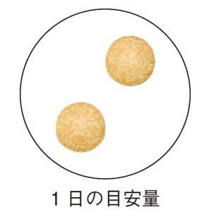 大豆イソフラボン / 200mg×60粒 / 女性らしさの成分「アマニ」新配合 inship 03