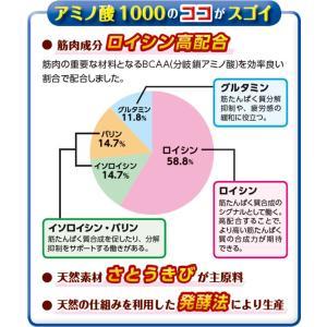 アミノ酸1000 6個セット / 6ヶ月分 / 送料無料 / ポイント3倍|inship|02
