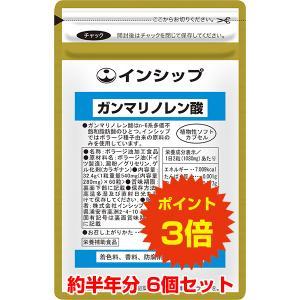 ガンマリノレン酸 6個セット / 6か月分 / 送料無料 / ポイント3倍|inship