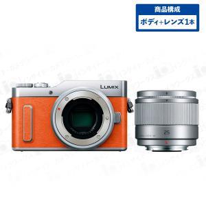 Panasonic LUMIX ミラーレス一眼カメラ DC-GF10(DC-GF90) ボディ オレンジ + 単焦点レンズセット LUMIX G 25mm/F1.7 ASPH. H-H025-S シルバー|insight-shop