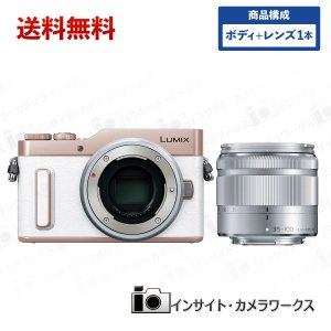 Panasonic LUMIX DC-GF10 ボディ ホワイト + 望遠ズームレンズセット G VARIO 35-100mm/F4.0-5.6|insight-shop
