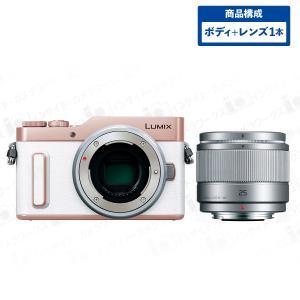 Panasonic LUMIX ミラーレス一眼カメラ DC-GF90(DC-GF10) ボディ ホワイト + 単焦点レンズセット LUMIX G 25mm/F1.7 ASPH. H-H025-S シルバー|insight-shop