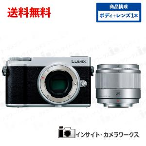 Panasonic ミラーレス一眼カメラ ルミックス GX7MK3 ボディ シルバー + 単焦点レンズセット LUMIX G 25mm/F1.7 ASPH. シルバー|insight-shop