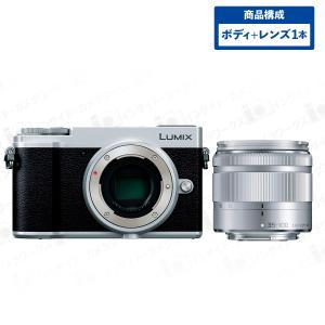 Panasonic ミラーレス一眼カメラ ルミックス GX7MK3 ボディ シルバー + 望遠ズームレンズセット LUMIX G VARIO 35-100mm/F4.0-5.6 ASPH./MEGA O.I.S シルバー|insight-shop