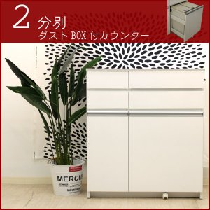 ダストボックス カウンター ダスト キッチン収納棚 ゴミ箱 ごみ箱 2分別 30リットル 30 ふた付き 隙間 スリム 隙間家具|interior-daiki