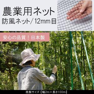 農業用ネット 防風ネット 12mm目 既製サイズ 幅2m×長さ100m JQ|interior-depot