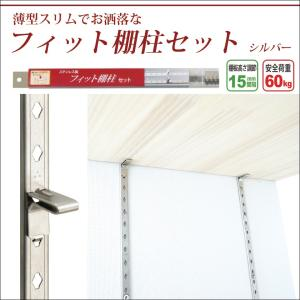 棚柱 ガチャレール フィット棚柱セット シルバー|interior-depot