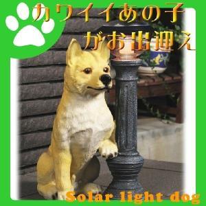 ソーラーライト 柴犬タロー 太陽光 エクステリア 玄関灯 犬型 エントランス|interior-festa