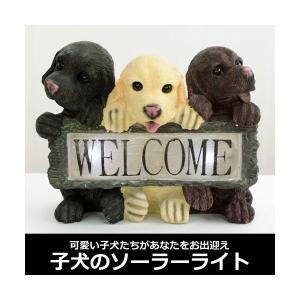 子犬のソーラーライト エクステリア フットライト 玄関灯 犬型 エントランス 値下げ|interior-festa