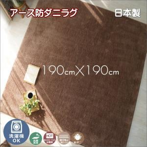 洗濯機で洗える アース防ダニ ラグ カーペット ホットカーペット対応 ポッシュ 約190cmX190cm interior-fuji
